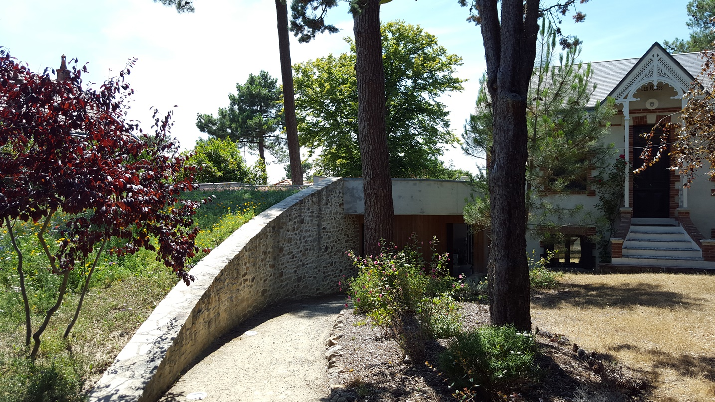 Concepts - Un abri sous les pins